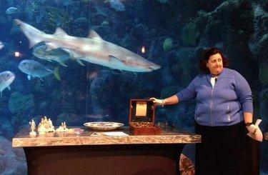 Dr. Lori appraising antiques and in aquarium
