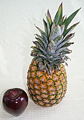 Still life painting of apple and pineapple